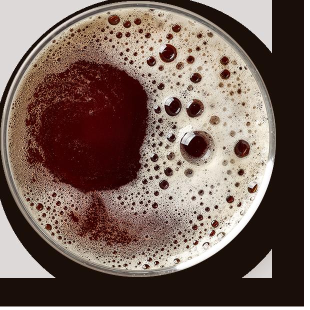 http://www.birrificiolagramigna.it/wp-content/uploads/2017/05/beer_transparent.png